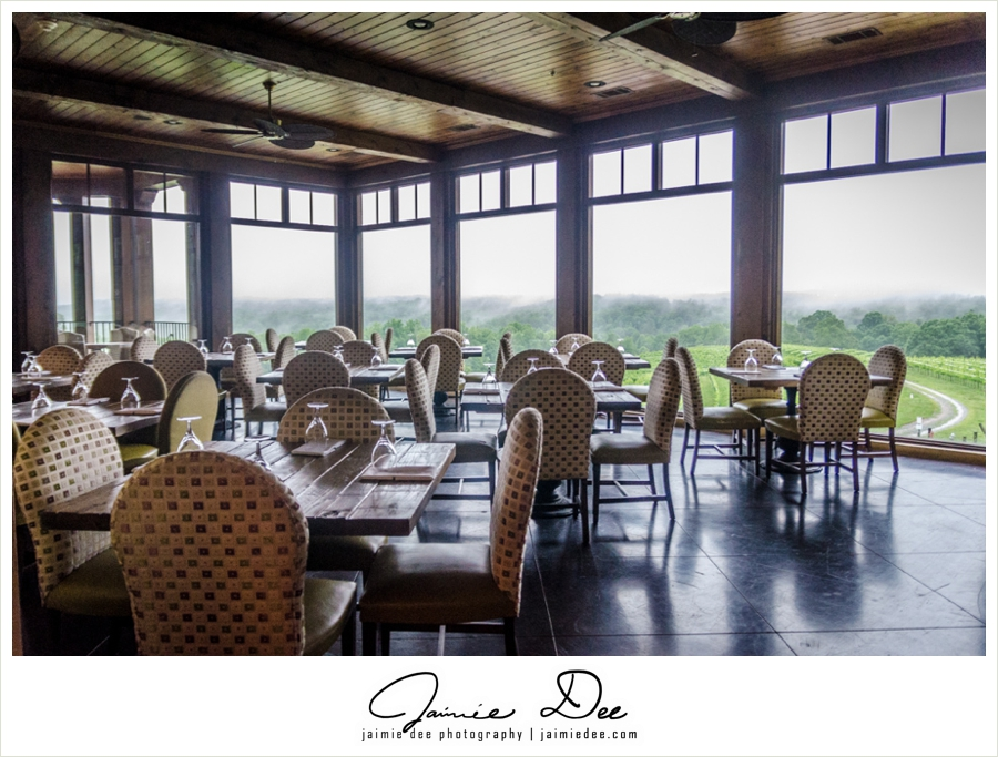 montaluce-winery-&-restaurant-atlanta-wedding-photography-0008