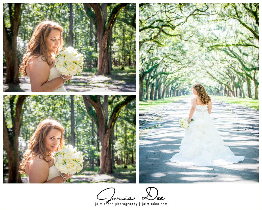 wormsloe plantation wedding pictures | Atlanta Wedding Photograp