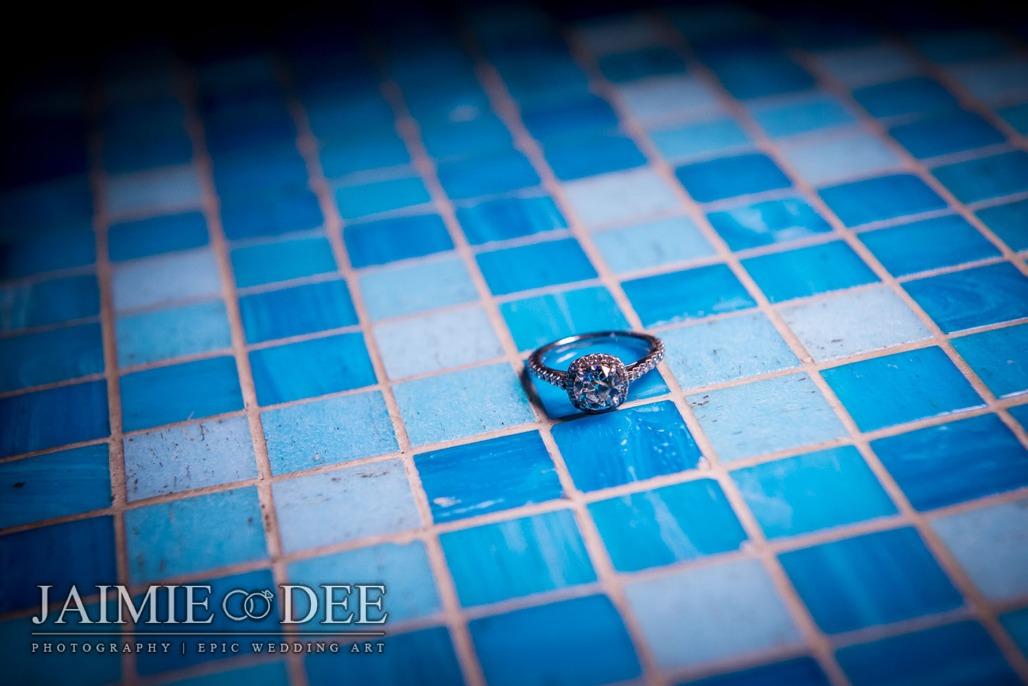 Aquarium Engagement Photos | Atlanta Wedding Photography