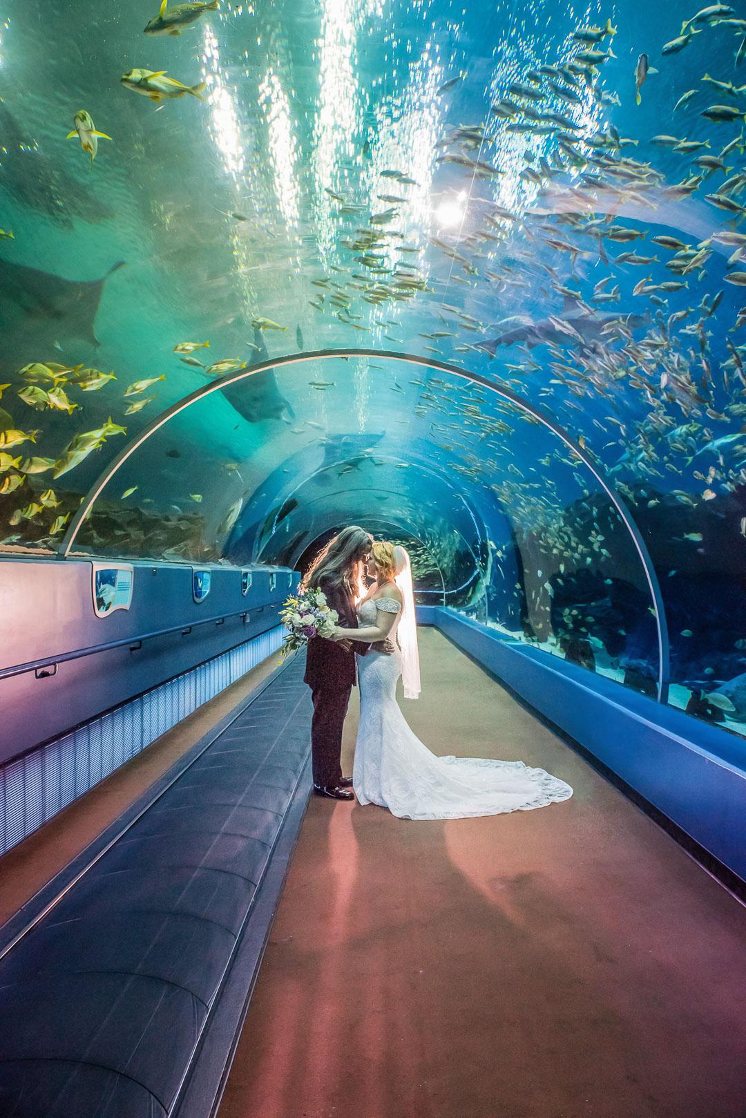 H-Kelsey-Liam-Georgia-Aquarium-0233