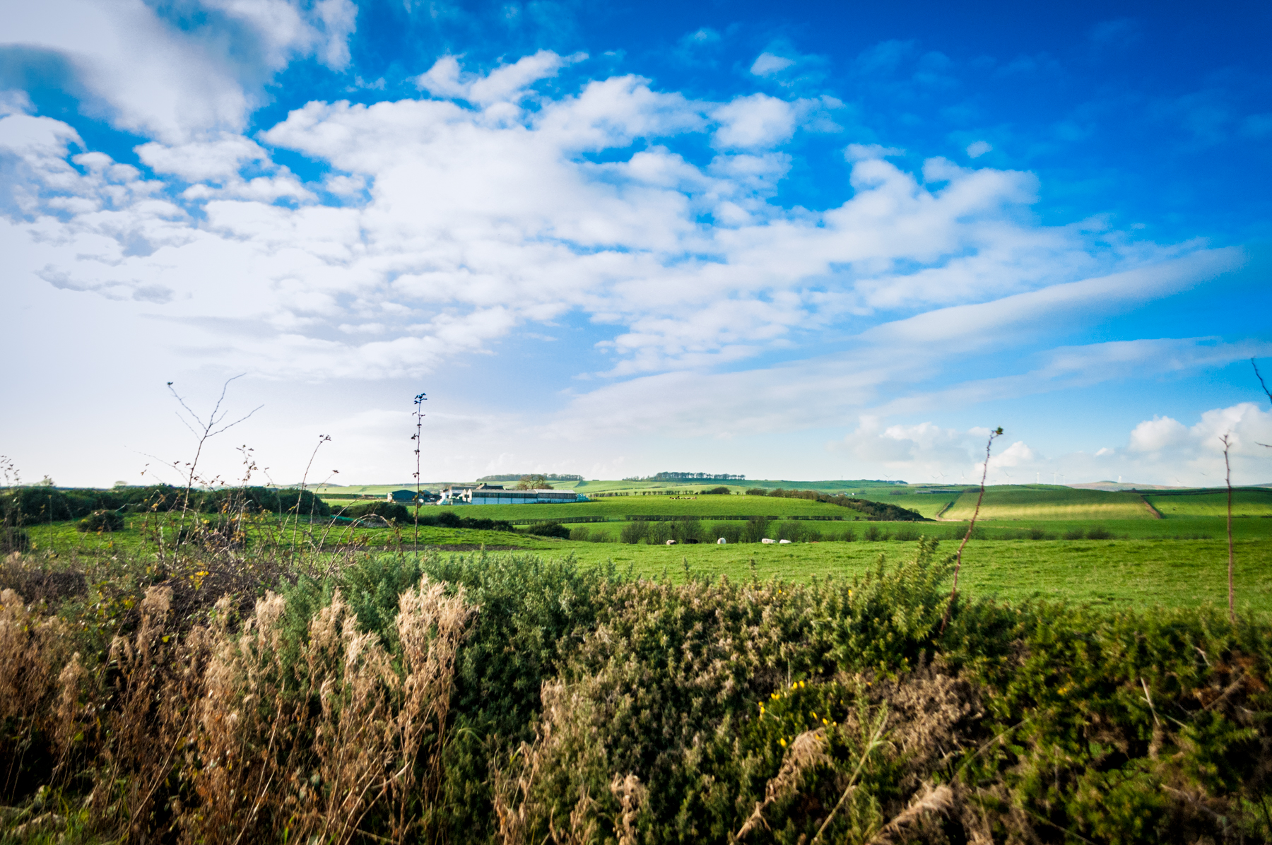 A Walk Through Kilwinning, Scotland | Landscape Photography
