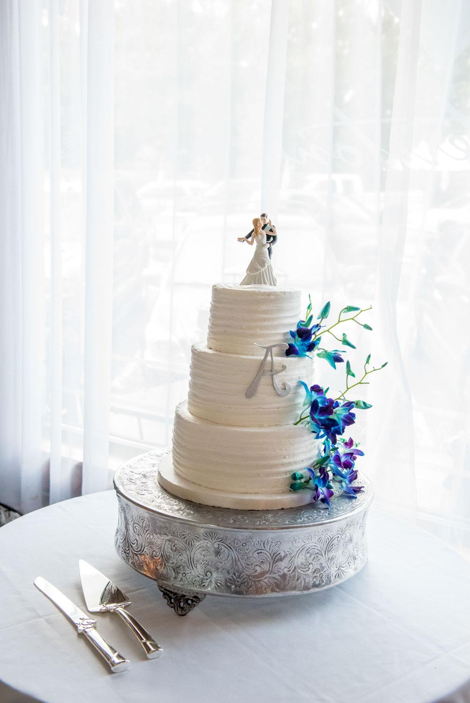 A Disney Themed Wedding in Acworth, GA - Atlanta Wedding Photographers