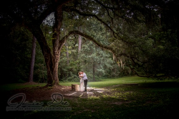 Sheldon Church Ruins Weddings | Atlanta Wedding Photography
